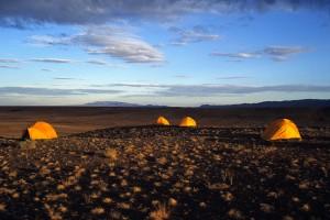 Gobi Tents
